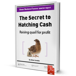 The Secret to Hatching Cash